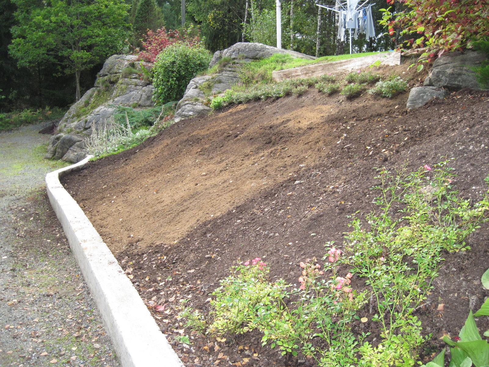 Tips för sluttning   trädgårdens byggprojekt   trädgård ifokus