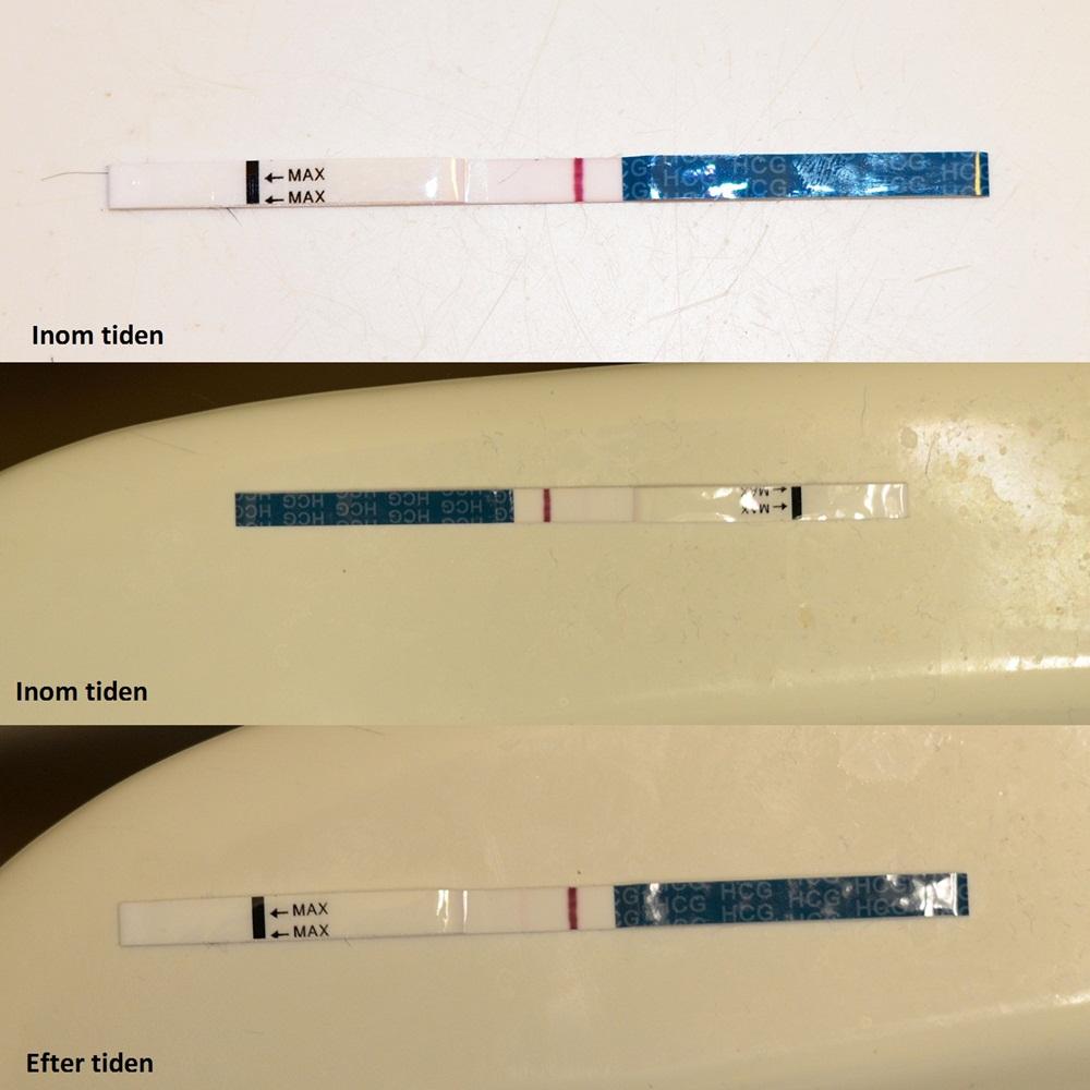 När testa efter ägglossning