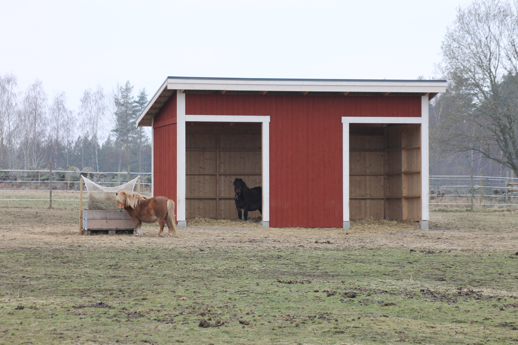 Vindskydd häst mått