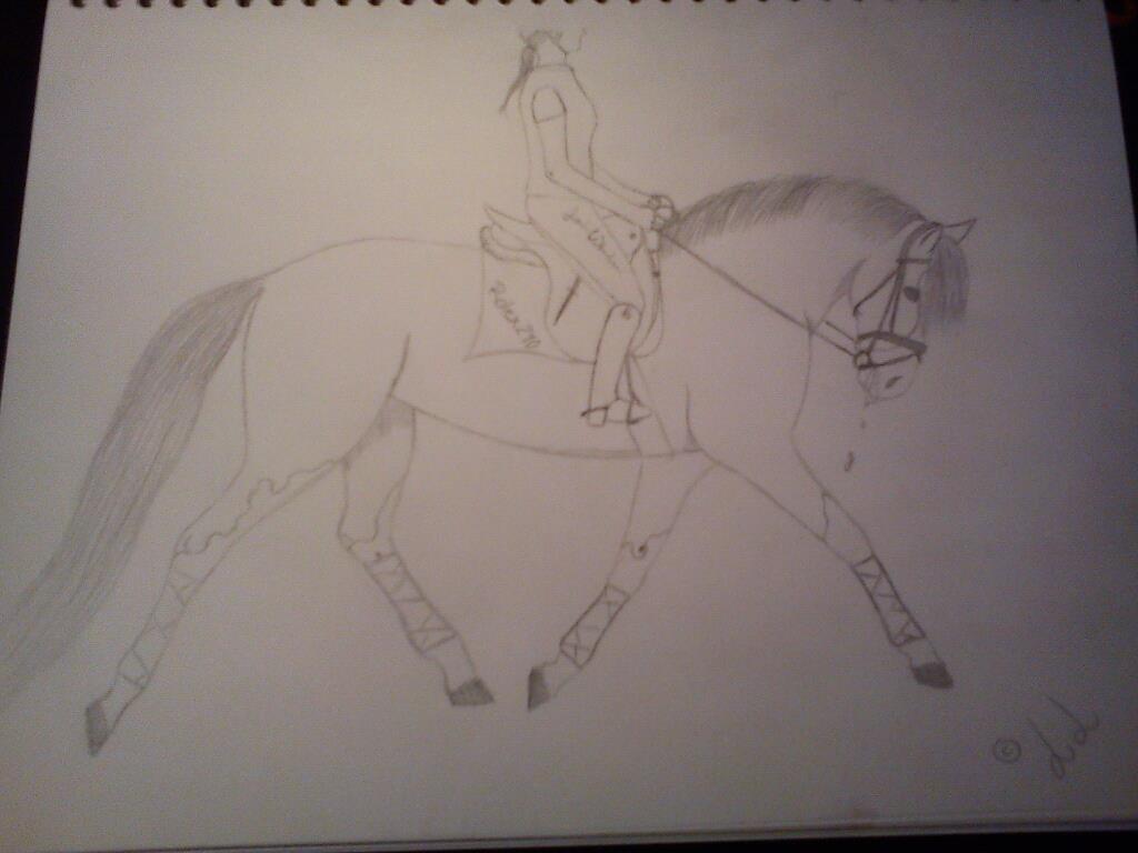 låna häst