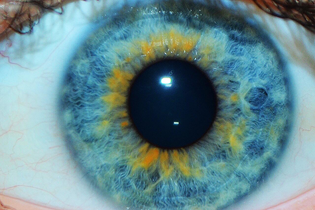 vilken ögonfärg har jag