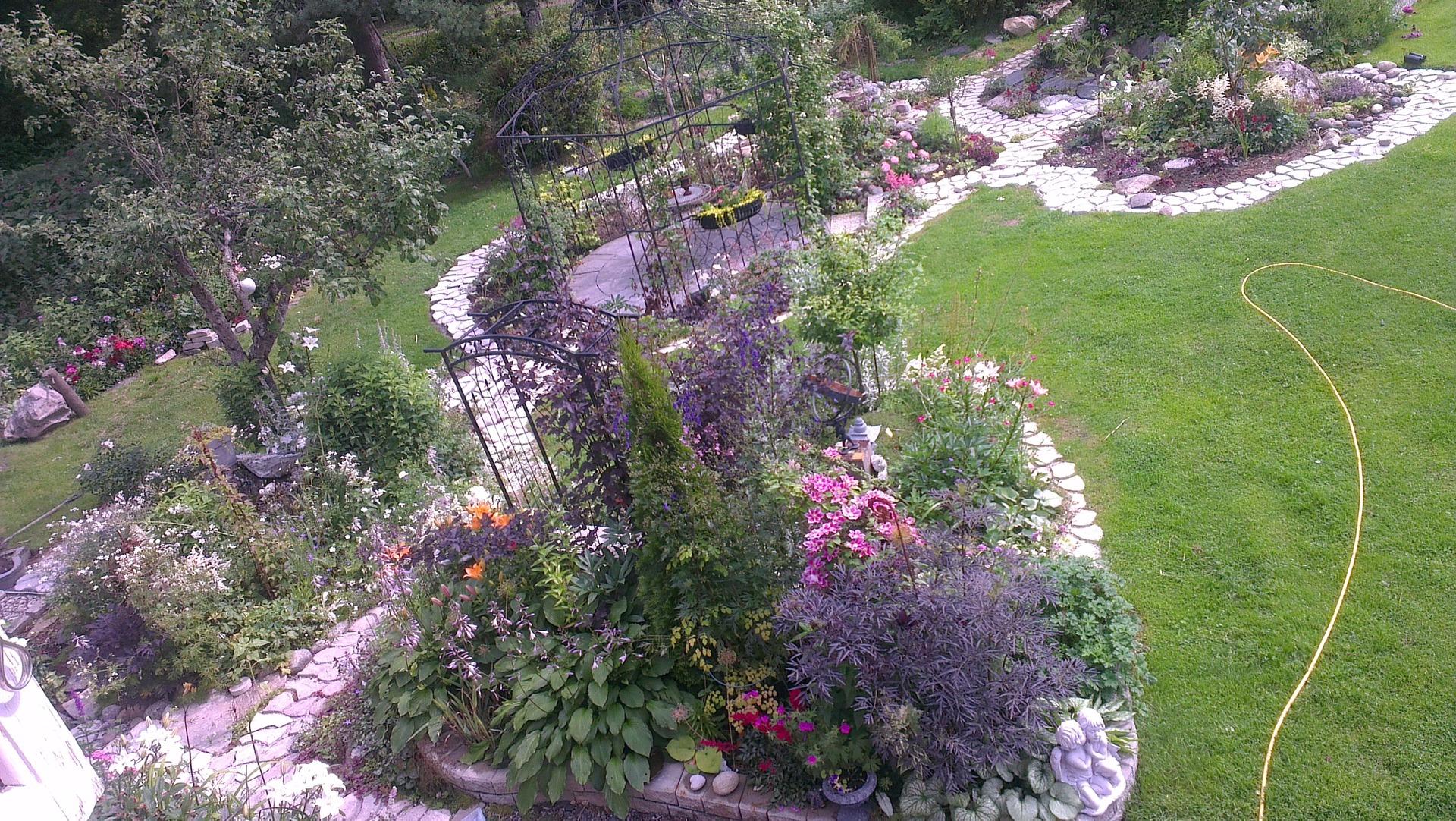 Utsikt   rabatter, perenner och annueller   trädgård ifokus