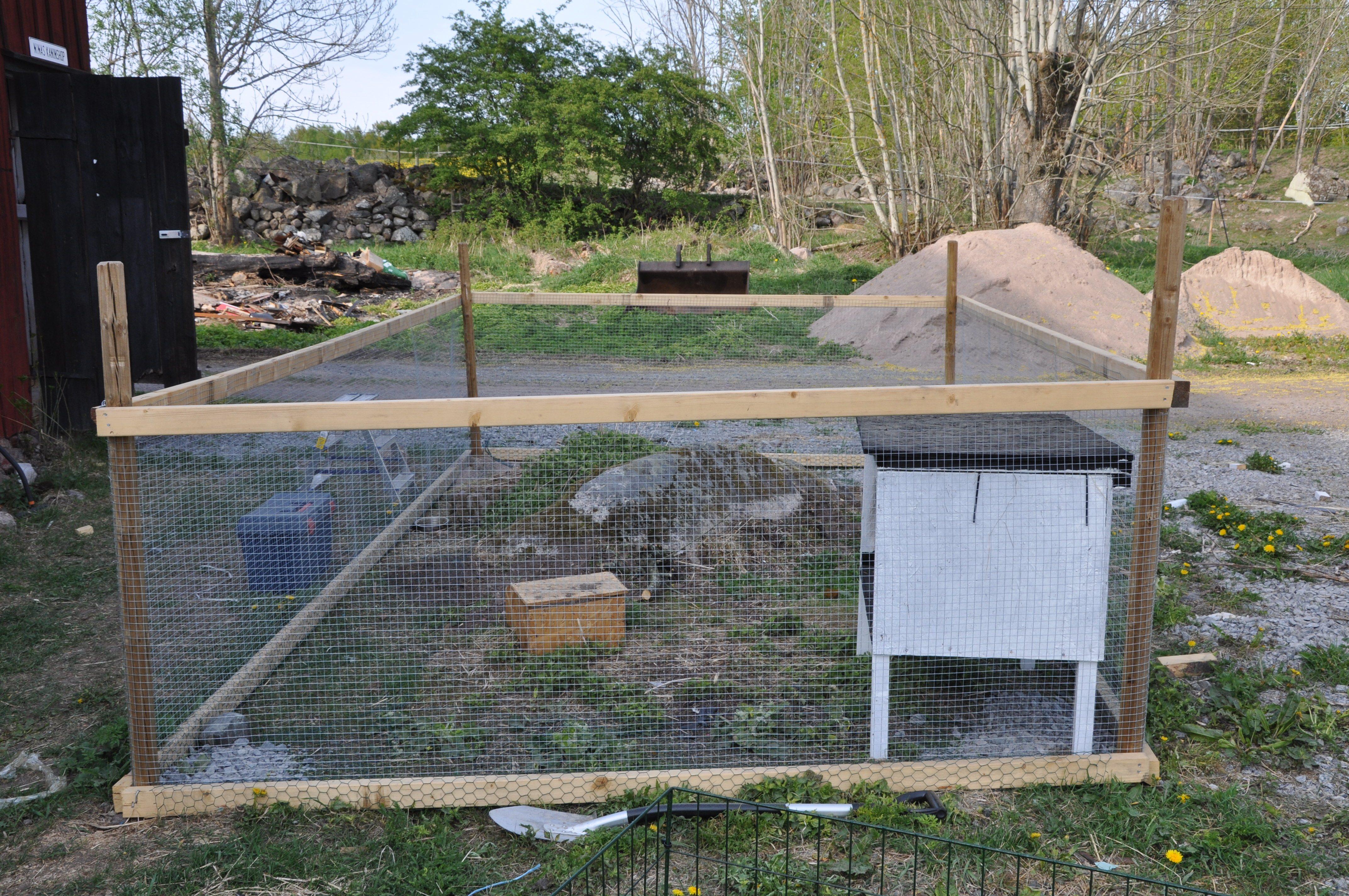 Rastgård   bur och aktivering   kanin ifokus