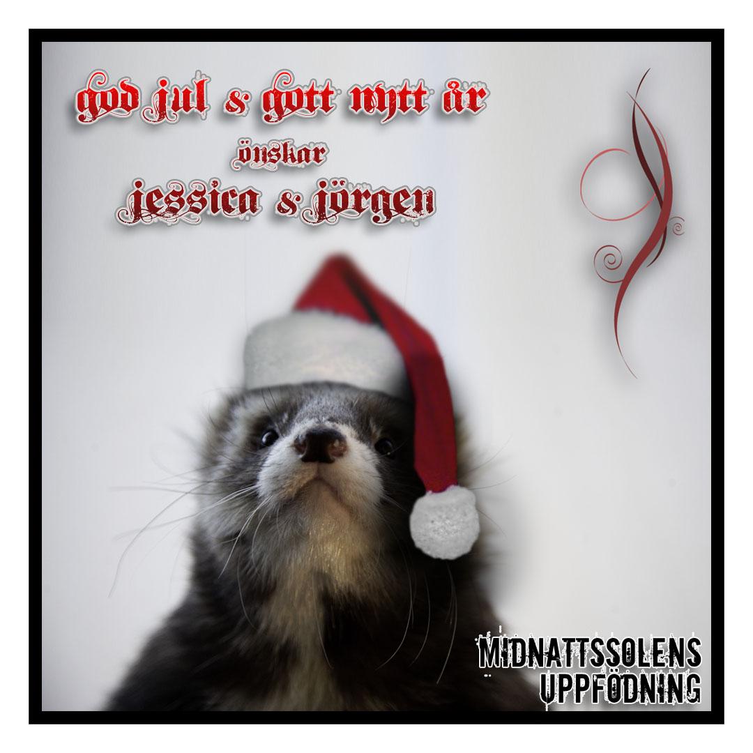 god jul gratulationer God Jul & Gott Nytt År!   Gratulationer och Glädjebetygelse  god jul gratulationer