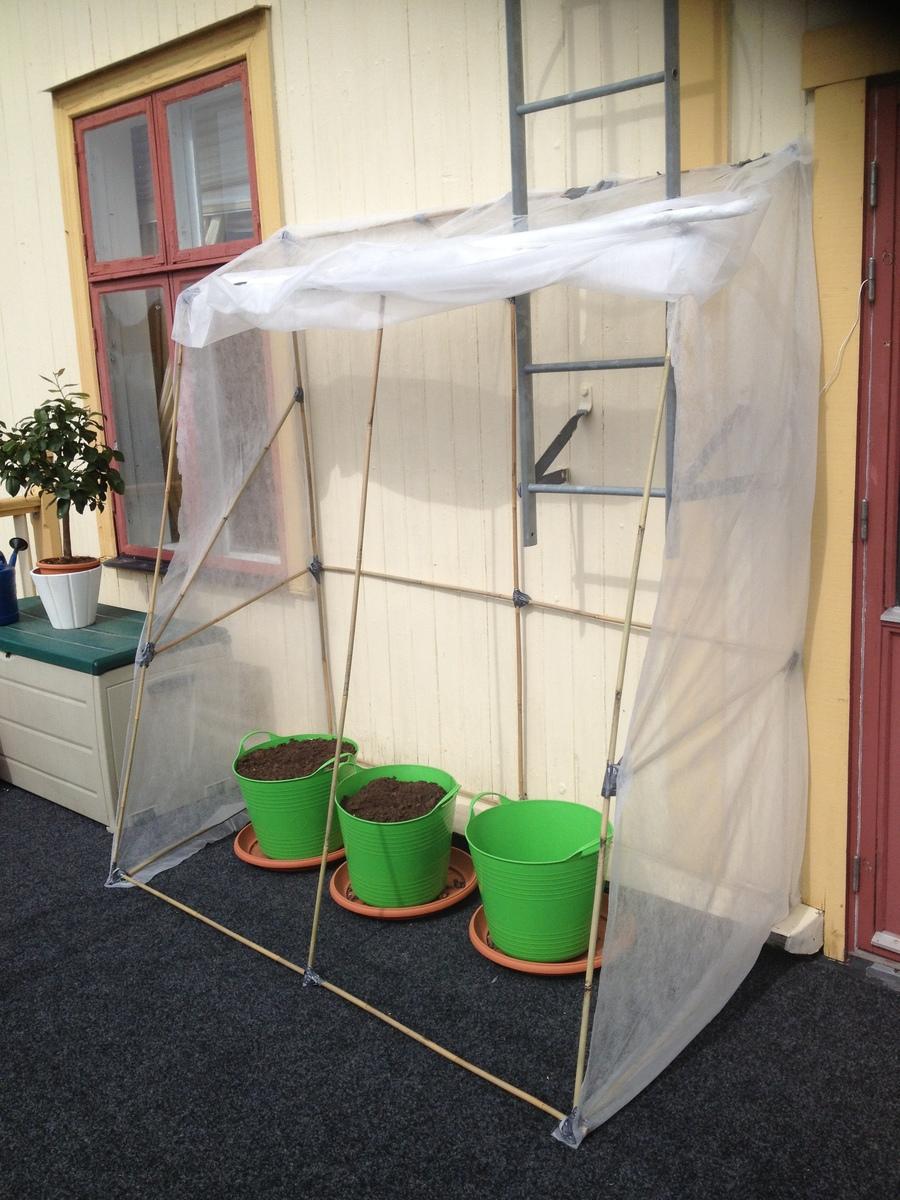 Budgetväxthus i plast?? - Växthus, uterum och vinterträdgÃ¥rd ... : plast till växthus : Inredning
