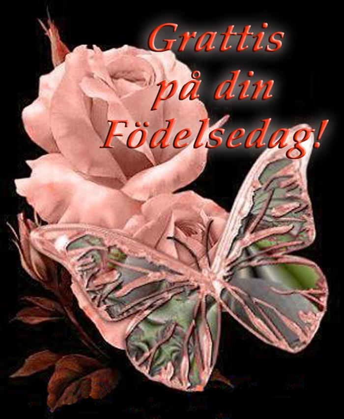 grattis din födelsedag Grattis Fjäril!   Medlemmar   Healing iFokus grattis din födelsedag